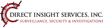 Direct Insight Services INC